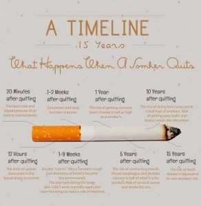 Would You Quit Smoking If You Know These Facts?